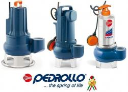 Repair of pumps Pedrollo in Poltava. Service center Pedrollo
